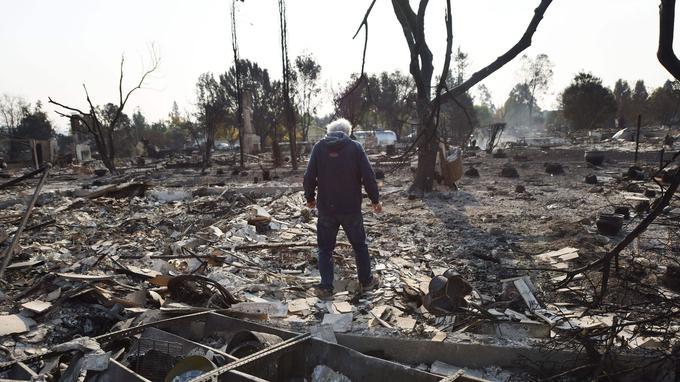 Un homme se rend sur les lieux où sa maison se tenait à Santa Rosa en Californie. <i>Crédits Photo: ROBYN BECK/AFP</i>