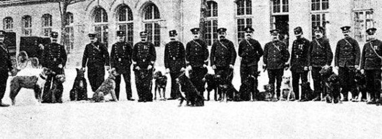 Le groupe de Pantin, Saint-Denis, Aubervilliers, Saint-Ouen, Clichy. Photo illustrant l'article du «Figaro» sur les chiens de policiers du 14 avril 1910.