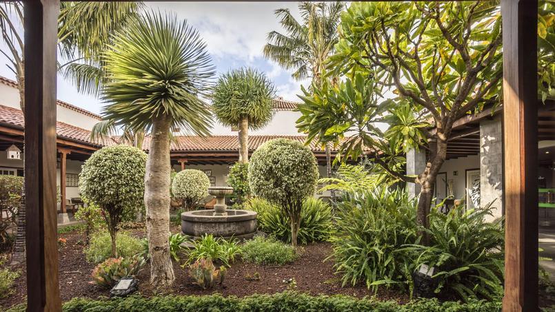 Les canaries des paysages grands formats for Bd du jardin botanique