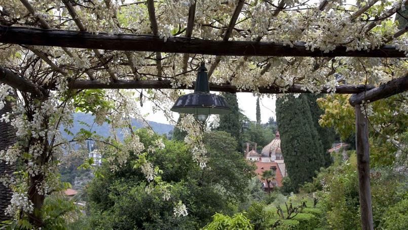 Villa della pergola les glycines en fleurs f tent le printemps - Pergola pour glycine ...