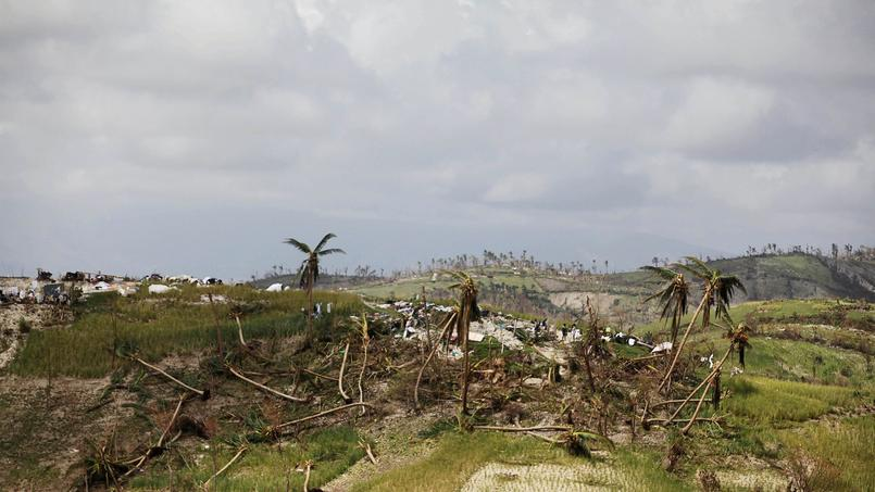 La nature n'a pas été épargnée par l'ouragan.