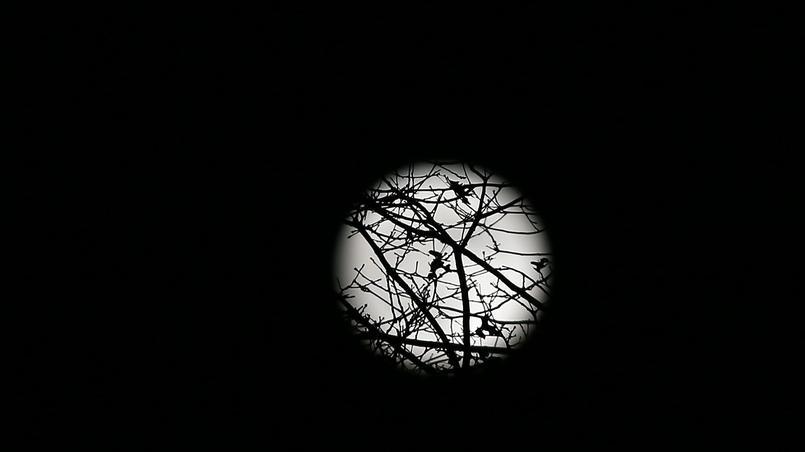 La lune à Bayonne, lundi soir.