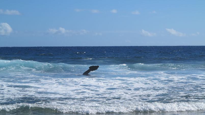 Plus de 200 ans après le naufrage du bateau, l'ancre de l'Utile affleure toujours du récif coralien entourant l'île.