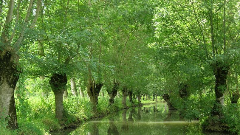 Marais Poitevin (Nouvelle-Aquitaine et Pays de la Loire), labellisé Grand Site de France en 2010.
