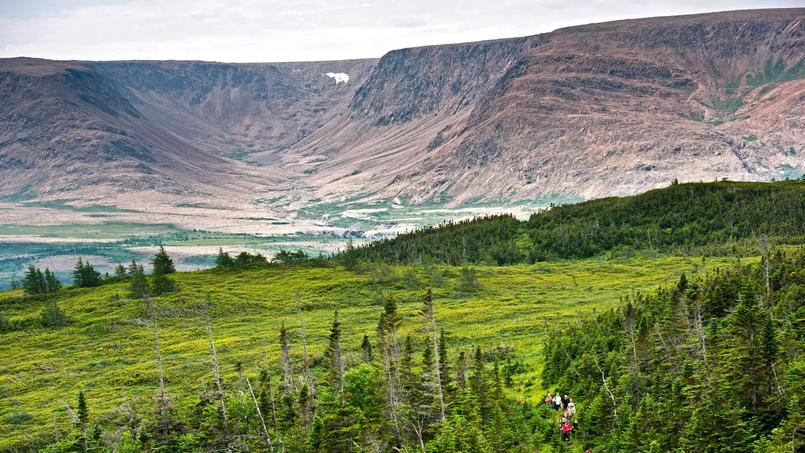 A Terre-Neuve, dans le Parc national du Gros-Morne, la verte forêt boréale de Tuckamore plantée d'épinettes joue les contrastes avec le site minéral de Tablelands.