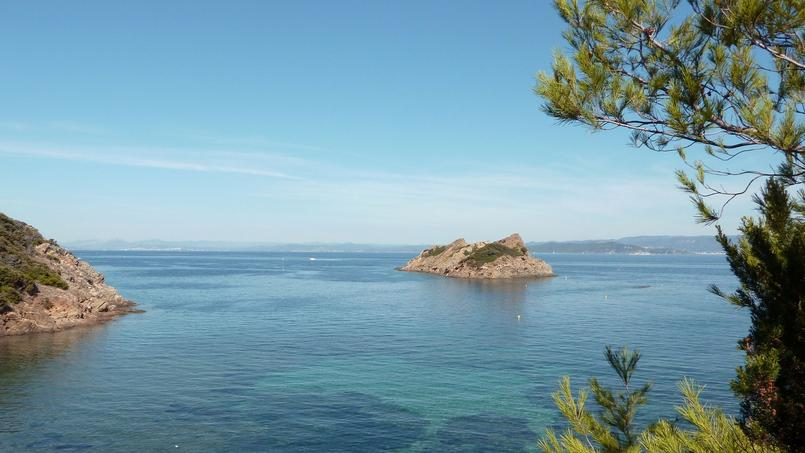 Au coeur du Parc national de Port-Cros, l'île de Rascas est classée réserve intégrale. (Christelle Gérardin / Parc national de Port-Cros)