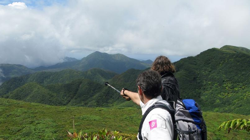 Par temps clair, depuis les flancs du volcan de la Soufrière (1467m), l'extraordinaire biodiversité du Parc national semble à portée de main. (Fabien Salles/Parc national de la Guadeloupe)