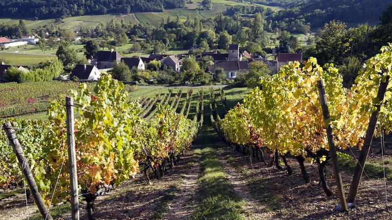 La route des grands crus de Bourgogne fête ses quatre-vingts ans et rayonne de tous ses joyaux.