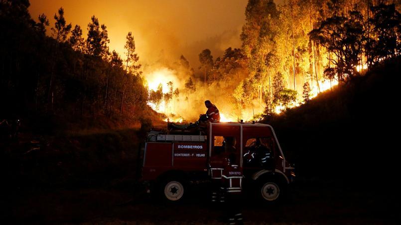 Près de 600 pompiers ont été mobilisés dans la nuit de samedi à dimanche.