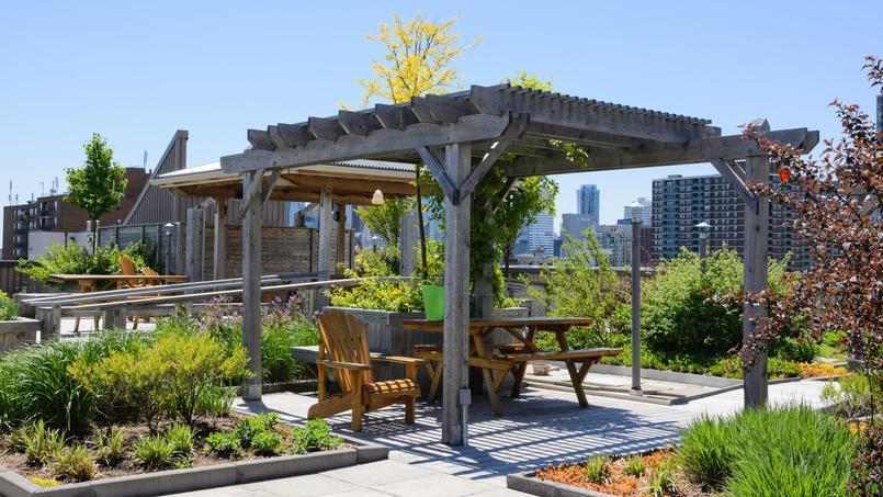 V g talisation comment cr er un jardin suspendu for Jardins suspendus le havre horaires
