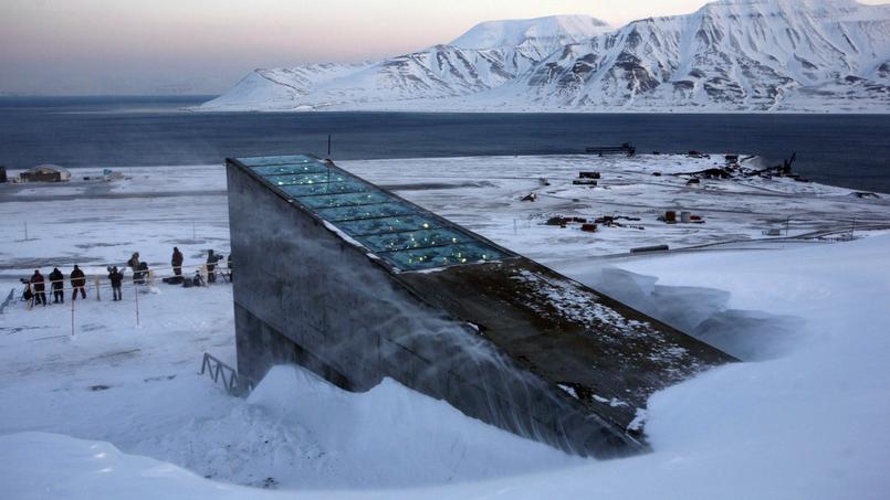 Plus de 860000 échantillons d'espèces végétales, représentant la biodiversité alimentaire mondiale, sont conservés dans la réserve de Svalbard (ci-dessus), sur l'île norvégienne de Spitzberg.
