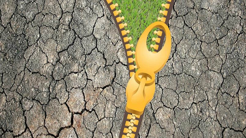 Collants en hiver, durs et crevassés en été, les sols argileux sont fertiles mais difficiles à travailler.