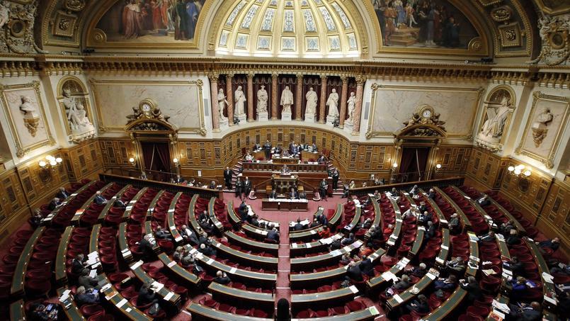 L'amendement voté par le Sénat fait partie du projet de loi Macron, examiné en séance depuis le 14 avril.