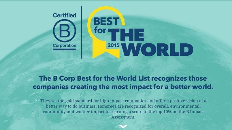 1.257 entreprises sont certifiées par le label américain B-corp© Bestcorporation/ Capture Ecran