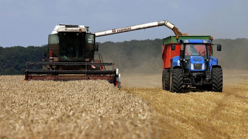 Un agriculteur sur quatre est touché par le syndrome d'épuisement professionnel.