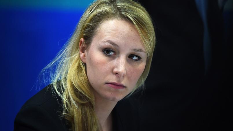 Marion Maréchal-Le Pen «a une légitimité de par son travail à l'Assemblée nationale et en Paca. Elle est notre meilleure candidate pour la région», estime Frédéric Boccaletti.