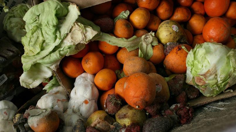 Chaque Français jette en moyenne 20 à 30 kilos de nourriture chaque année.
