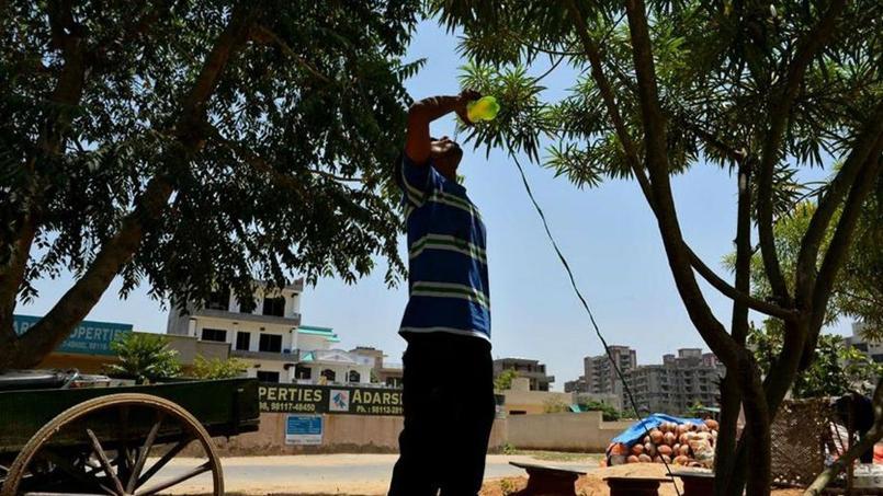 Les températures avoisinant les 50°C, dans le nord de l'Inde notamment, ont fait plus de 1100 morts