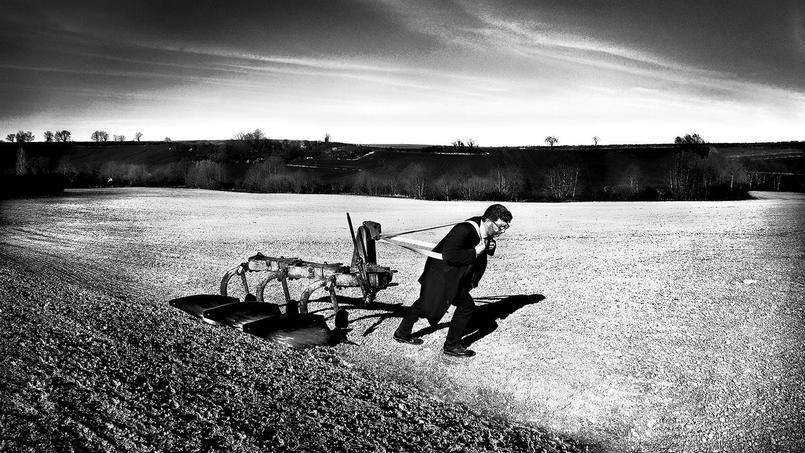 Le quotidien du «petit patron» vu par le photographe Jean Lecourieux-Bory.
