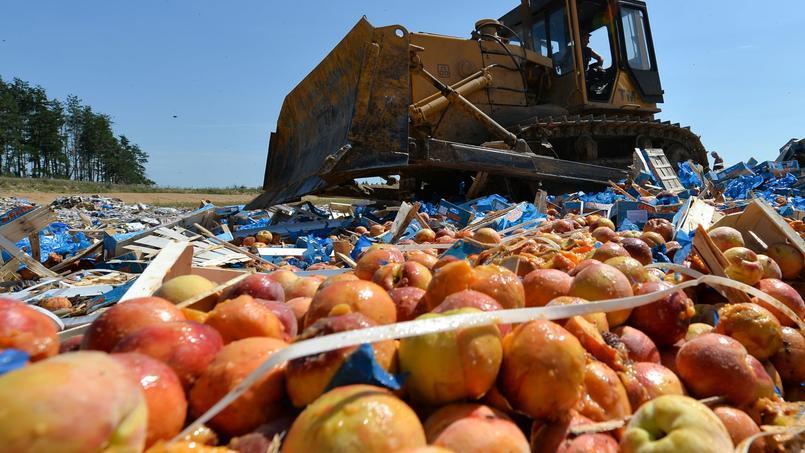 Comme pour marquer l'anniversaire de l'embargo, 6 août 2014, les autorités russes ont décidé de détruire les denrées importées de l'UE.