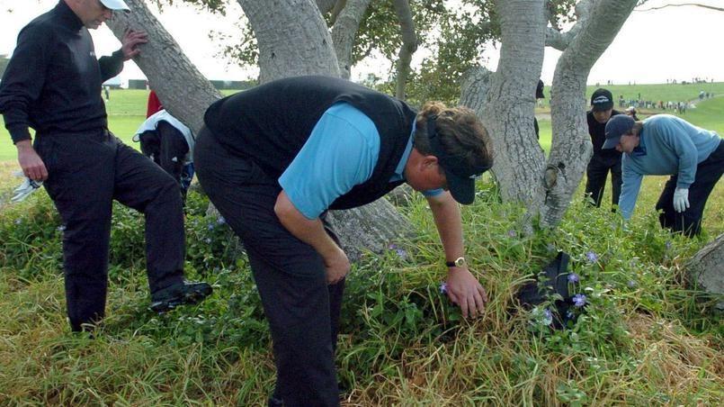 Un chômeur devient millionnaire en revendant les balles de golf perdues