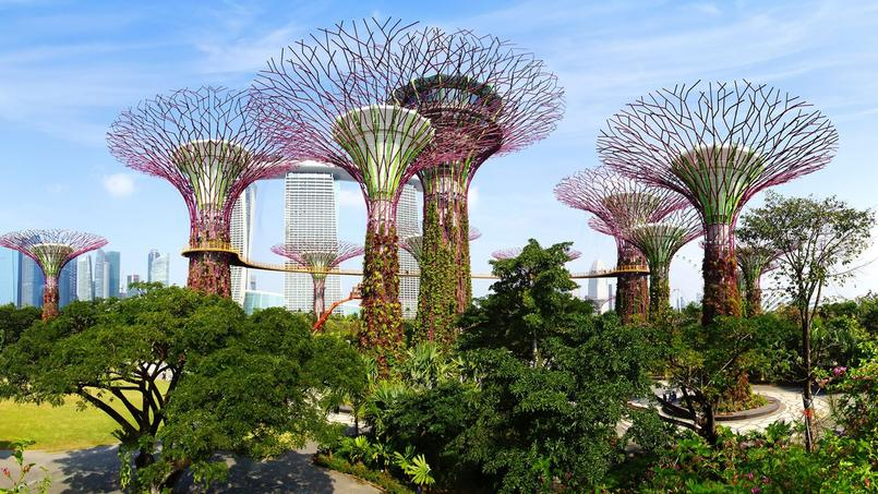 Un tour du monde des plus beaux jardins - Les plus beaux jardins de particuliers ...