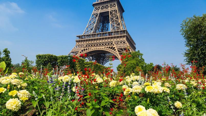 Les jardins de la Tour Eiffel, à Paris.