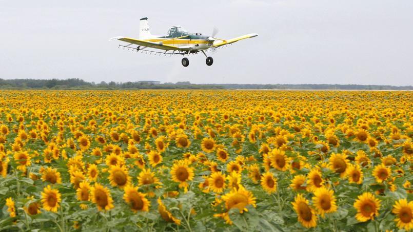 Les autorités aériennes clouent le co-avionnage au sol