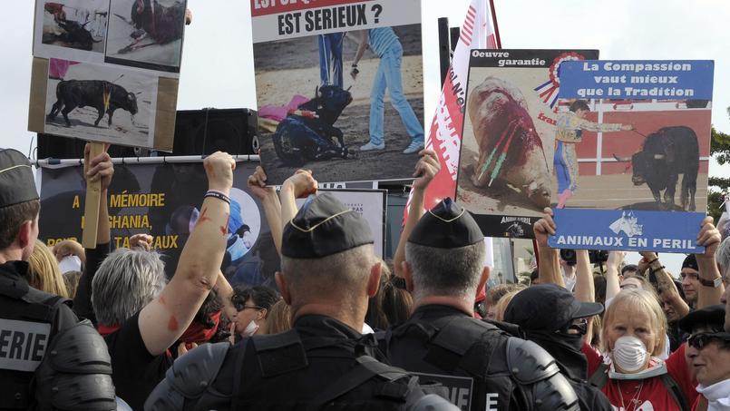 Manifestation anticorrida en 2013, à Rodilhan. Le village est devenu, depuis les violences perpétrées en 2011, un lieu symbolique, tant pour les aficionados que les opposants à la corrida.