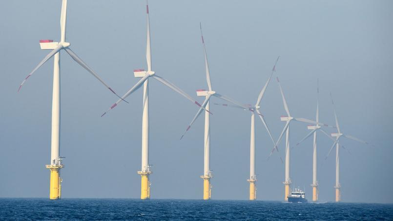 Un champ d'éoliennes de l'énergéticien allemand E.ON, en mer du Nord.