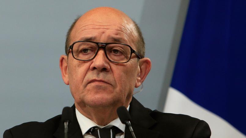 Jean-Yves Le Drian lors d'une conférence de presse le 20 janvier 2016.