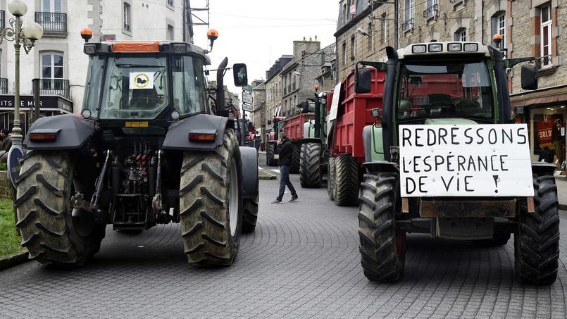 Ce que la France propose à Bruxelles pour sauver l'élevage