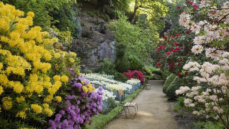 en 2016 les anglais f tent le jardin leur passion nationale