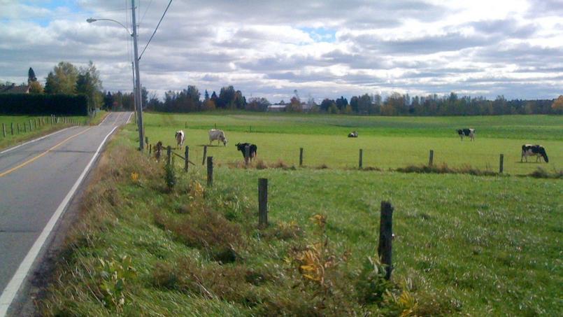 Une technicienne de la Chambre de l'agriculture du département de 26 ans est décédée dans une exploitation laitière du village des Farguettes, située sur la commune de Meyran (Aveyron). D'après les informations du Figaro,