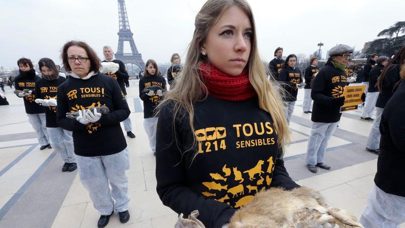Des militants de L214 participent à un «happening», un rassemblement visant à interpeller les passants et les médias, à Paris, en portant des lapins morts pour protester contre leurs conditions d'élevage et les traitements qui leur sont infligés.