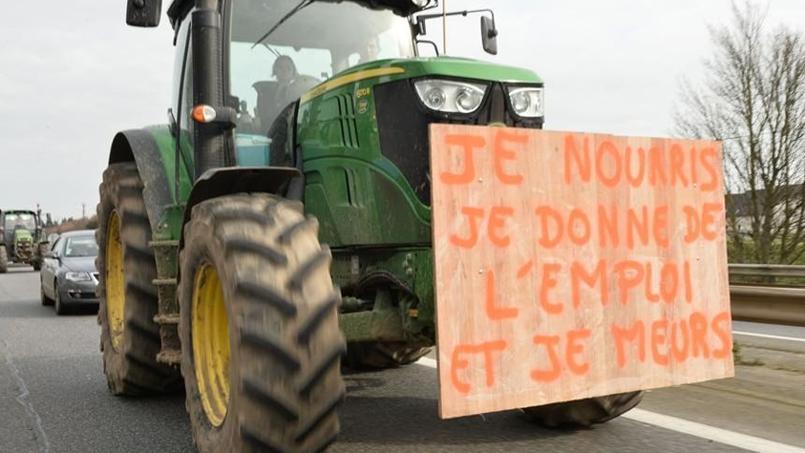 Depuis plusieurs semaines, les agriculteurs multiplient les manifestations, notamment en Bretagne, pour montrer leurs difficultés.