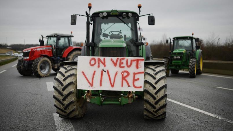 Alors que la crise agricole persiste, Intermarché veut garantir un prix minimum et indexé sur les fluctuations du coût de l'alimentation animale (soja et blé).