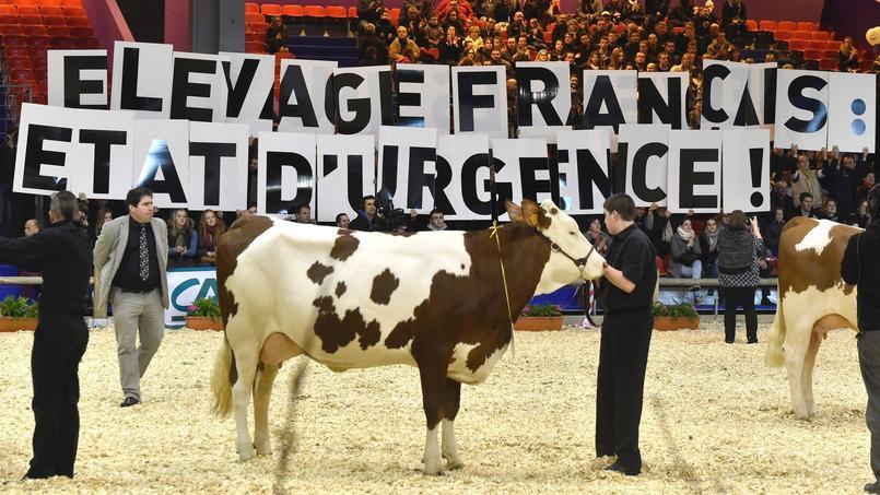 Salon de l 39 agriculture le stand charal pris pour cible - Billet pour le salon de l agriculture ...
