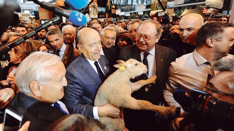 Alain Juppé, jeudi, au Salon de l'agriculture.