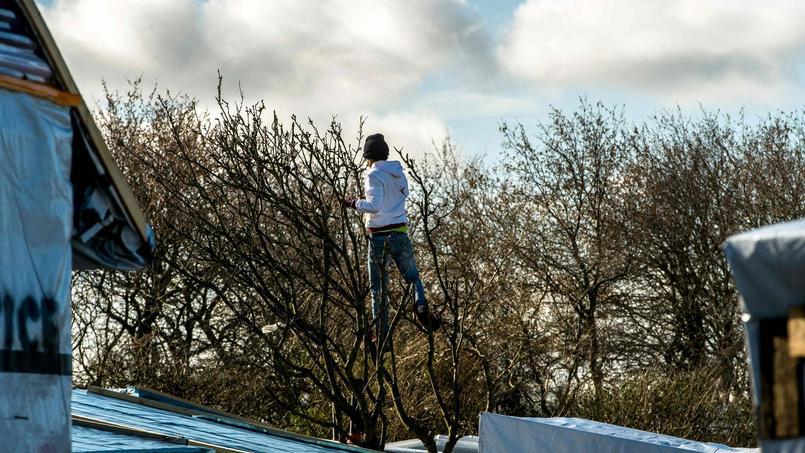 Migrants : et si on les laissait passer en Angleterre ?