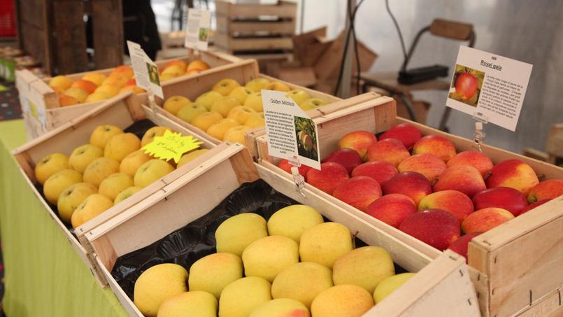 Sans supermarché mais avec Internet, consommer mieux et local coûte moins cher