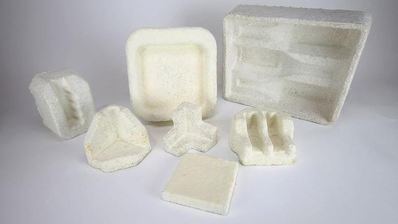 Exemples d'emballage conçus à base de champignons par la société Ecovative.