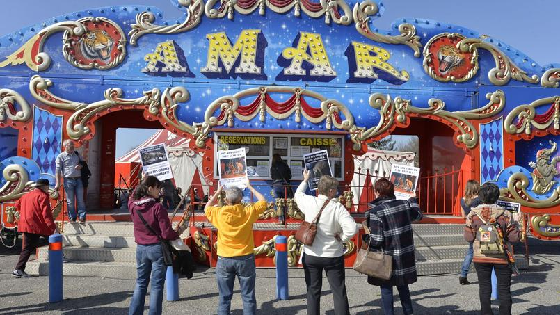 Des manifestants anti-cirque manifestent devant un chapiteau le 19 mars dernier à Limoges.