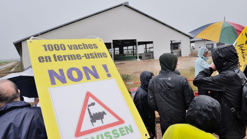 Les détracteurs de la ferme l'accusent d'industrialier l'agriculture sans penser à l'impact écologique.