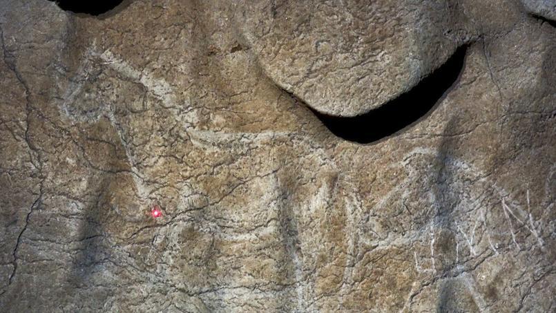 Les archéologues ont estimé le nombre de peintures représentant des animaux à au moins 70, s'étendant sur «environ 100 mètres», selon l'exécutif provincial.