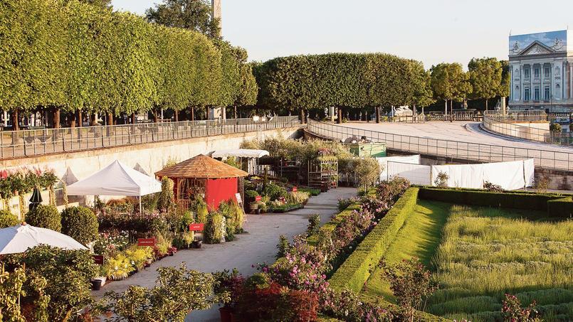 Jardins jardin aux tuileries la cit passe au vert for Jardins jardin aux tuileries