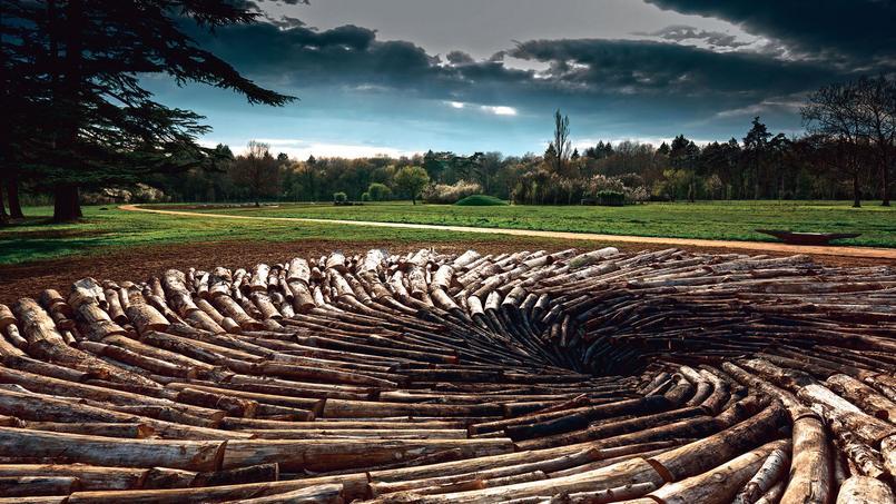 Carbon Pool de Chris Dury.