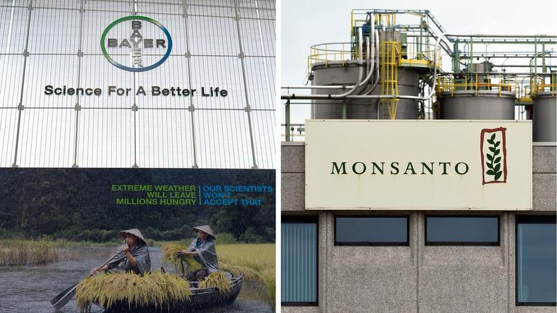 Relève de 3 dollars son OPA sur Monsanto — Bayer