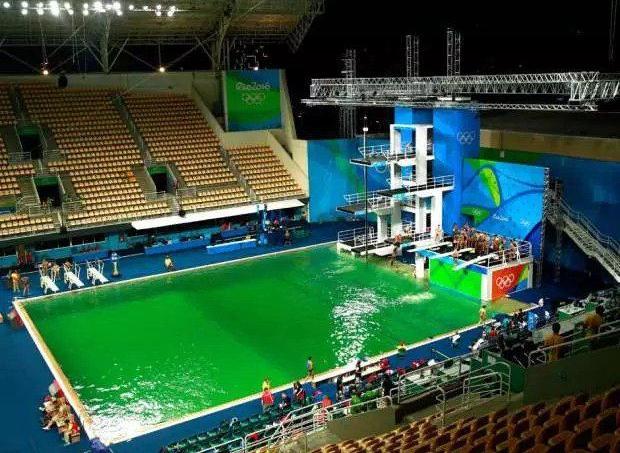 plongeon olympique le myst re de l 39 eau verte r solu. Black Bedroom Furniture Sets. Home Design Ideas