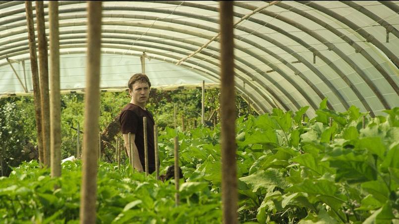 Pour «Toril», Laurent Teyssier a travaillé avec Guillaume Grosse, pour un scénario original dans un milieu méconnu.